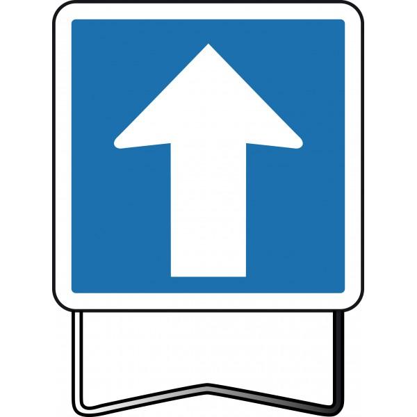 Panneau d'Indication CE12 : Toilettes Ouvertes au Public